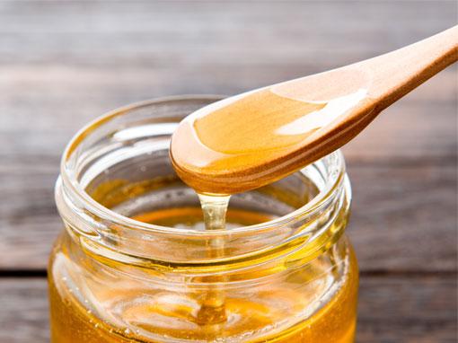 Les miels du Ruchers du Morvan