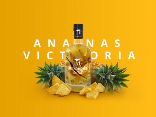 ZOOM sur le Ti Arrangé Ananas Victoria